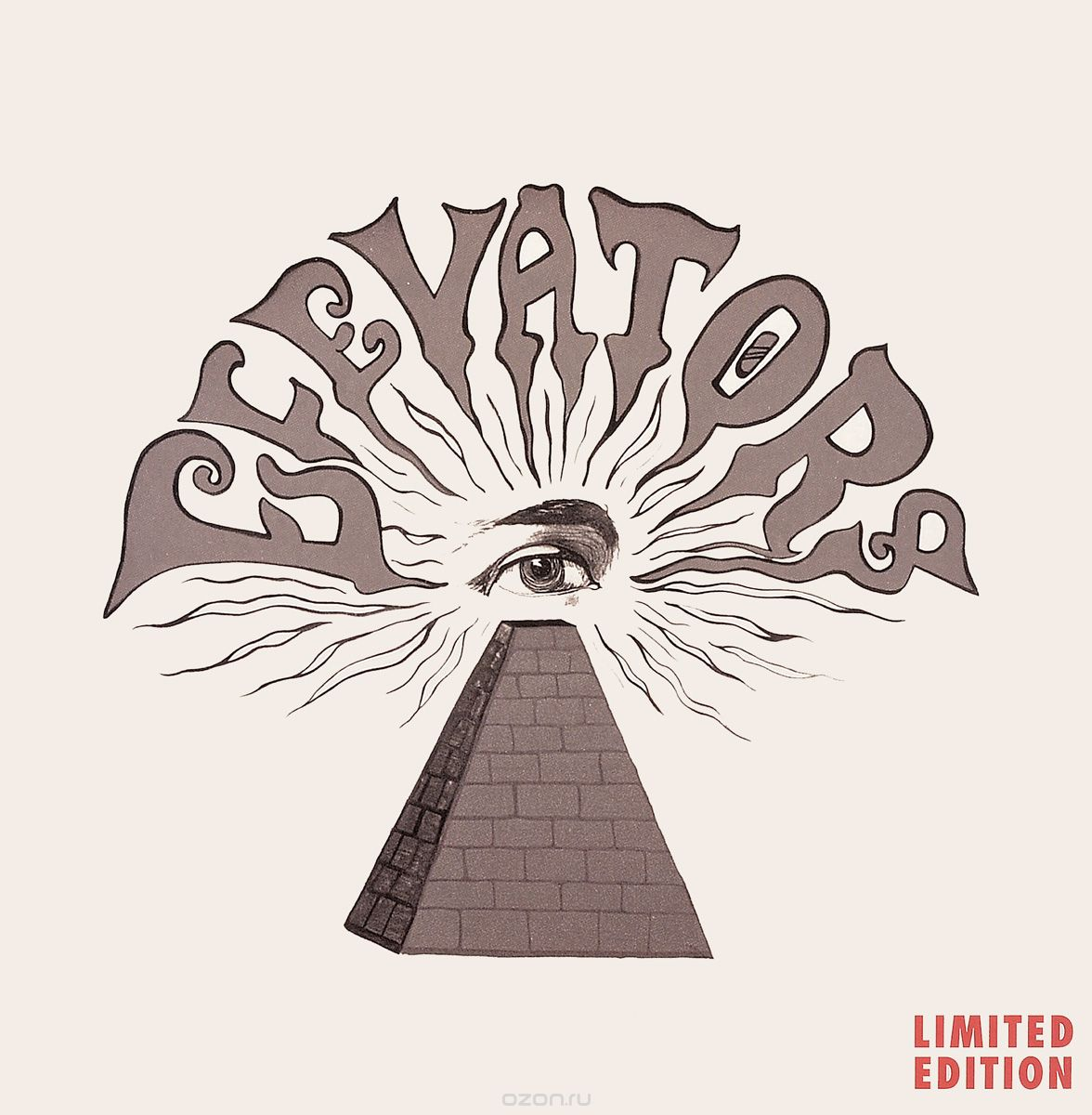 13th Floor Elevators. You